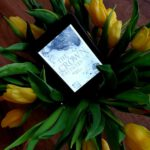 [Rezension ~ Werbung] The Crown Between Us. Royale Pflicht – Ada Bailey